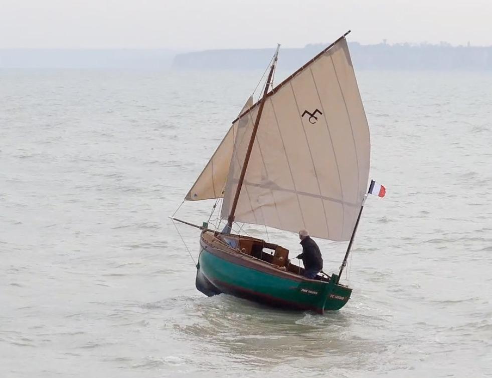 Première sortie en mer courlis
