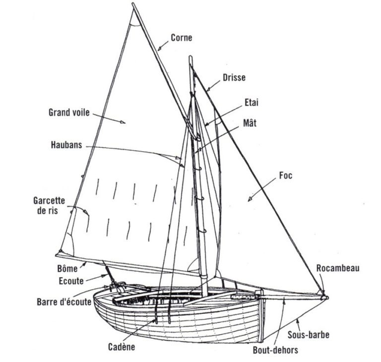 Termes marines voilure